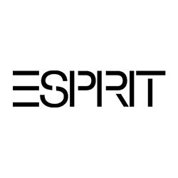 Imagine pentru producător Esprit